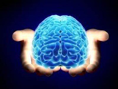 Manager avec les neurosciences