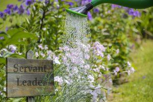 Servant leader - leader jardinier