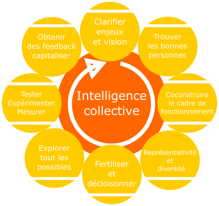 roue du processus de l'intelligence collective
