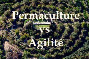 permaulture vs agilité