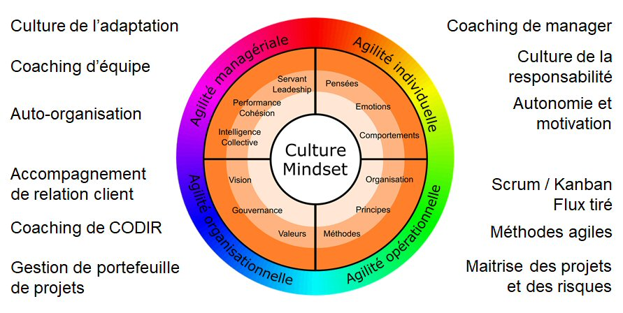 La roue de l'agilité holistique