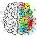 cerveau agilité et nudge