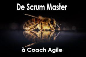 De Scrum Master A Coach Agile