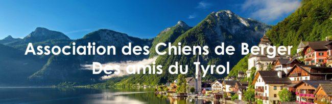 Association des Chiens de Berger Des amis du Tyroll Gmunden Autrichien